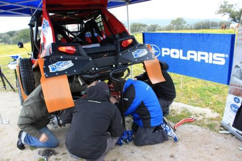 Asistencia Rallyes